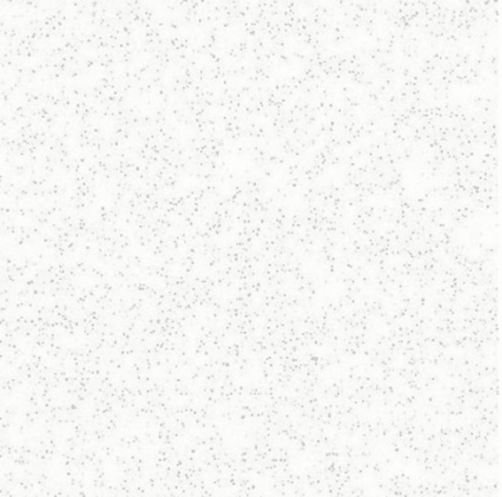 Rockfon Fibral Wit 600x1200 inleg